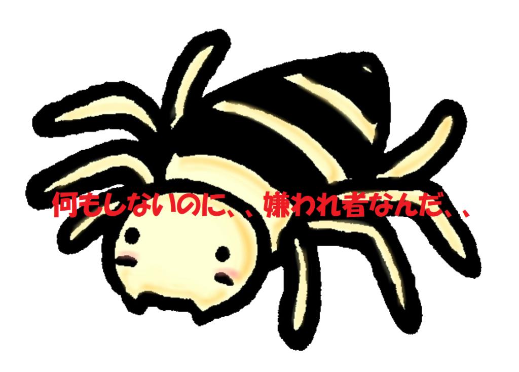 実は知らない?本当の蜘蛛(くも)の種類や退治方法