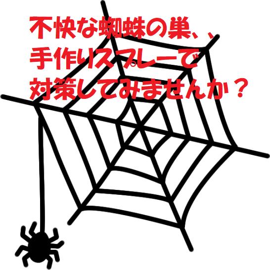 蜘蛛の巣対策に使える!手作りスプレーと手作りグッズ