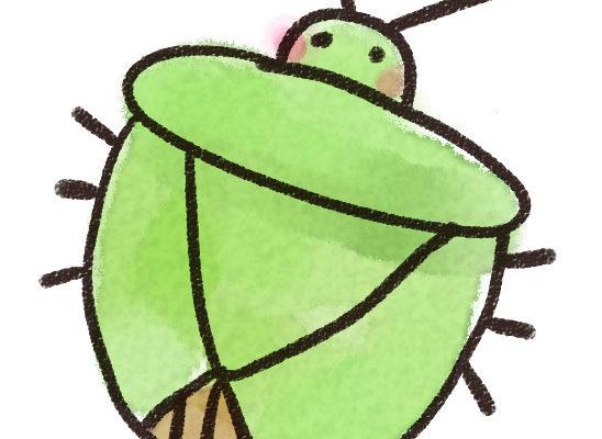 嫌な匂いを放つ、カメムシにはどんな種類があるの?